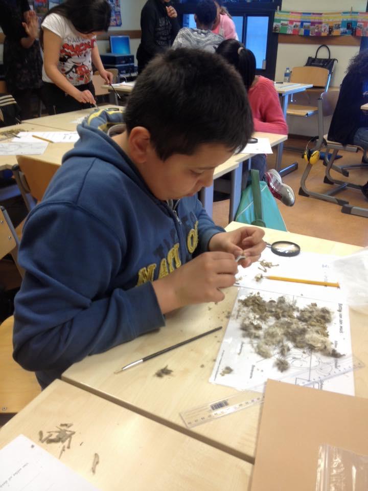 Foto: basisschool de fontein Dordrecht