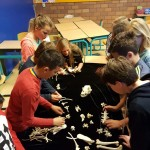 Foto: basisschool Het kristal Dordrecht